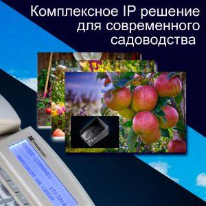IP решение для ГГС садоводства, переход к решению