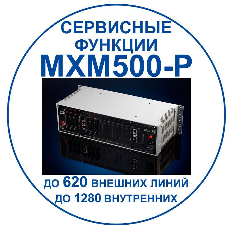 связь для бизнеса: сервисные функции MXM500-P. Переход к документу с описанием