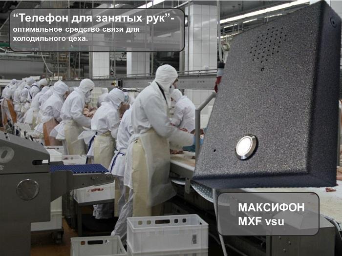 Антивандальное устройство дуплексной ГГС для холодильного цеха